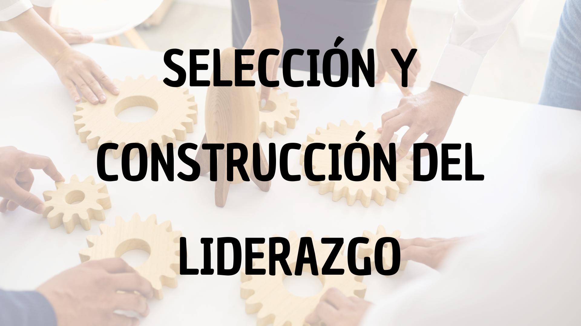 Selección y construcción del liderazgo